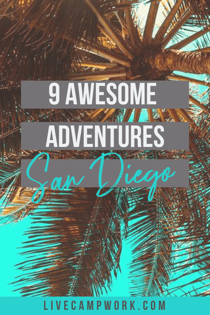 San Diego, California is full of fun activities for families with kids as well as travelers.