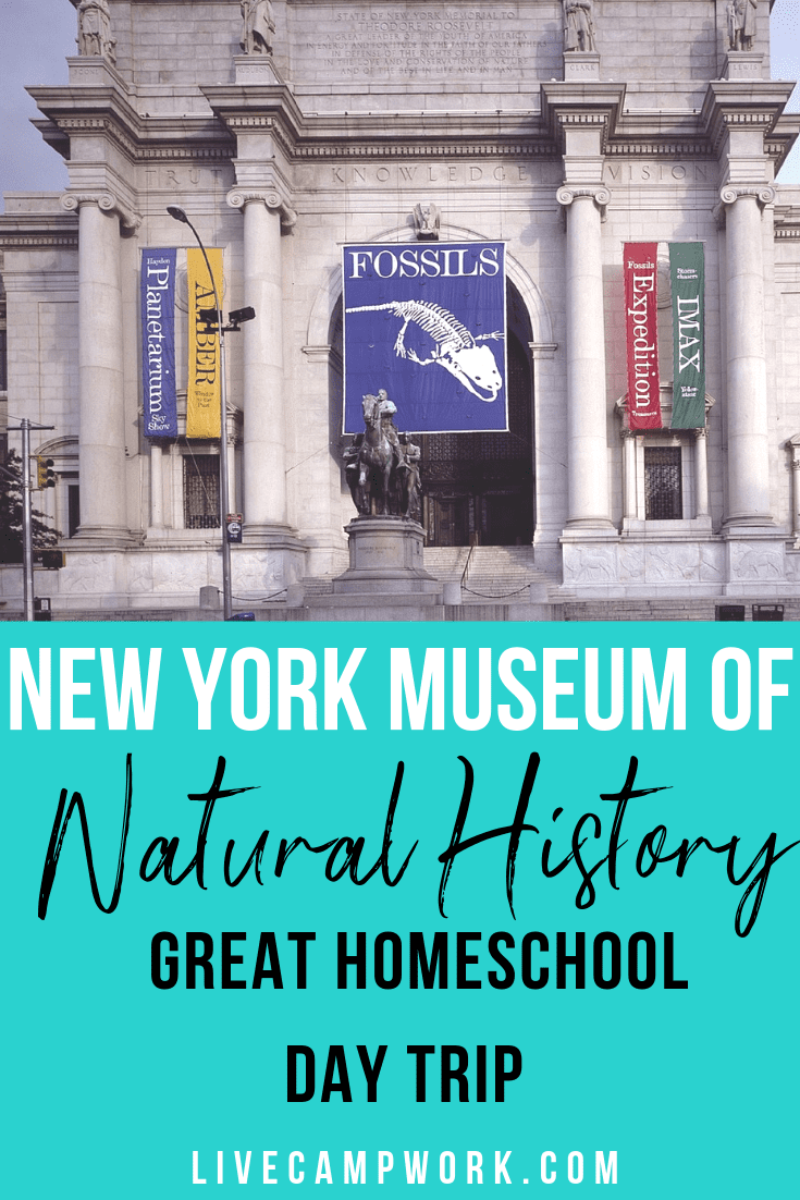 Spend a full day exploring the New York Museum of Natural History!