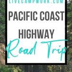 Redwoods California Road Trip