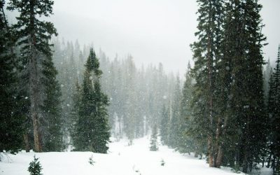 Winter RVing: The Ultimate Guide to Winter Camping