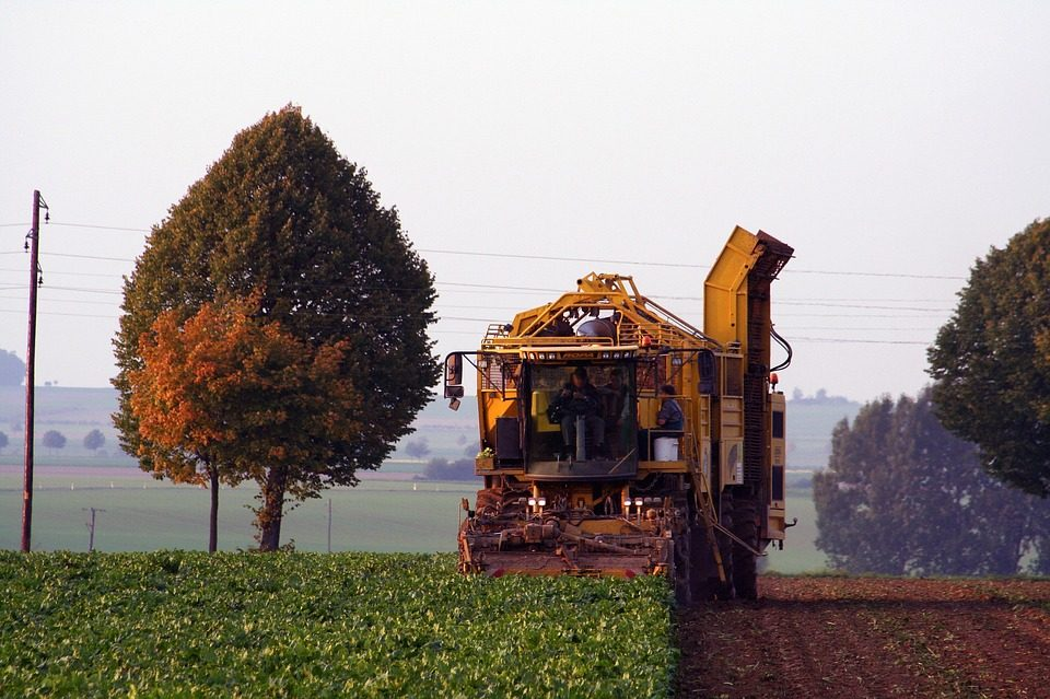 Sugar Beet Harvest Jobs